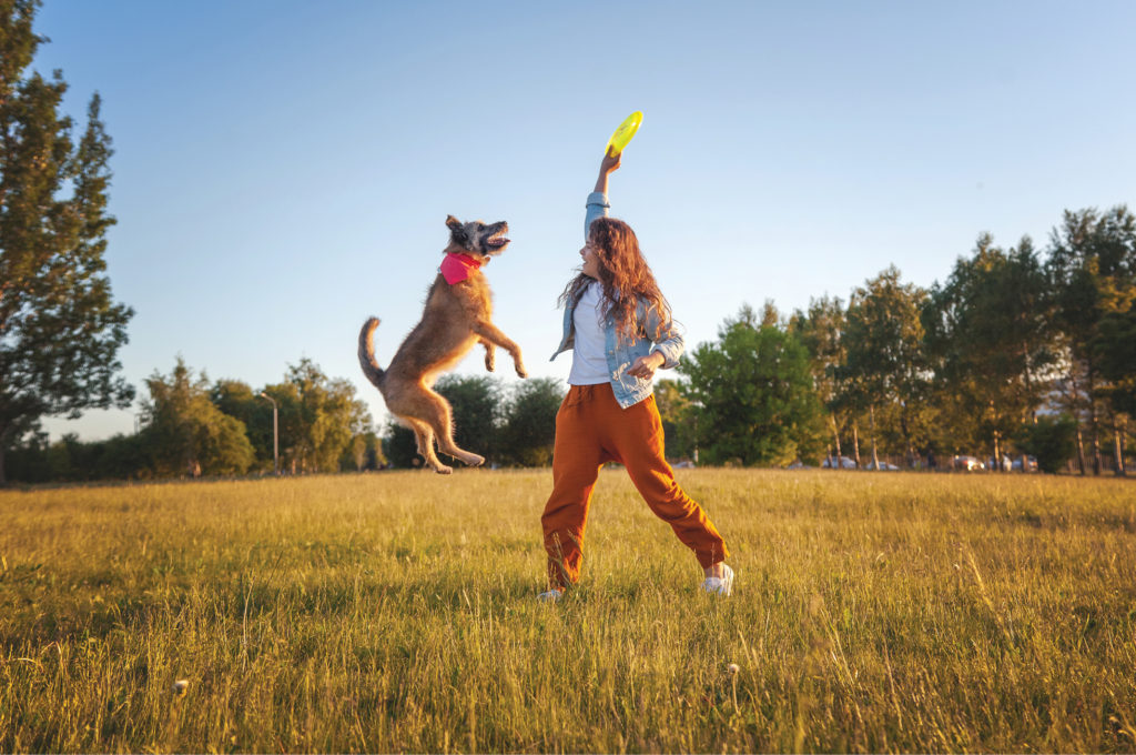 Woman holding frisbee with dog jumping high for it.