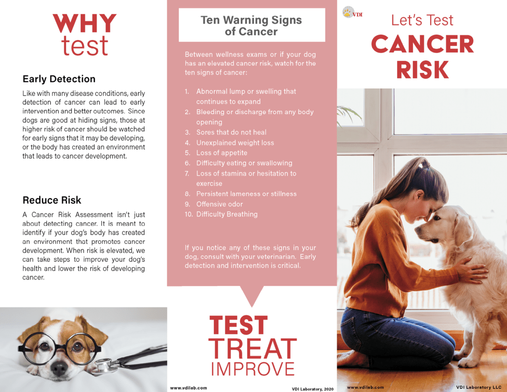 Icon of the Cancer Risk pet owner trifold. Links to the full PDF of the trifold.